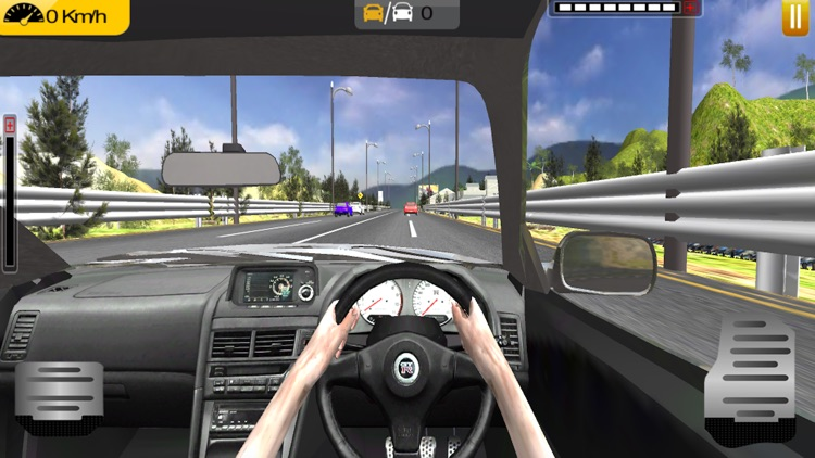 In Car Highway Driving