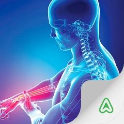 Rheumatology (AG)