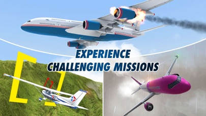 Take Off - The Flight Simulator Screenshot 2