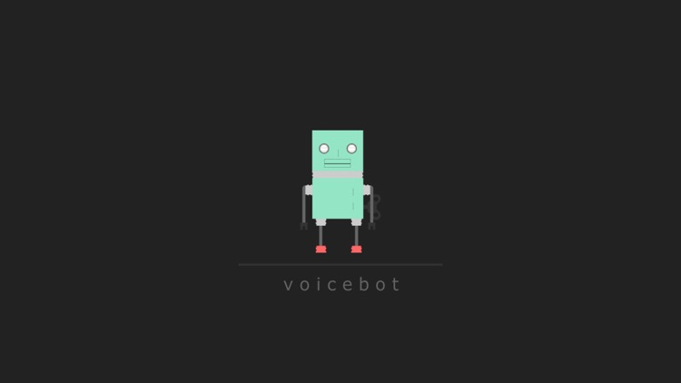 voice bot screenshot-0
