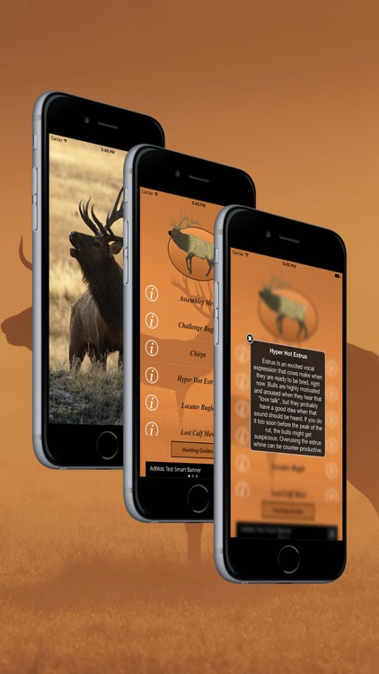 Elk Calls: Hunting Calls screenshot-3