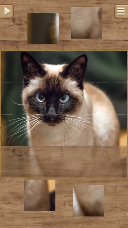 Cat Jigsaw Puzzles screenshot-3