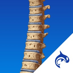 Spine Decide - Education & Engagement