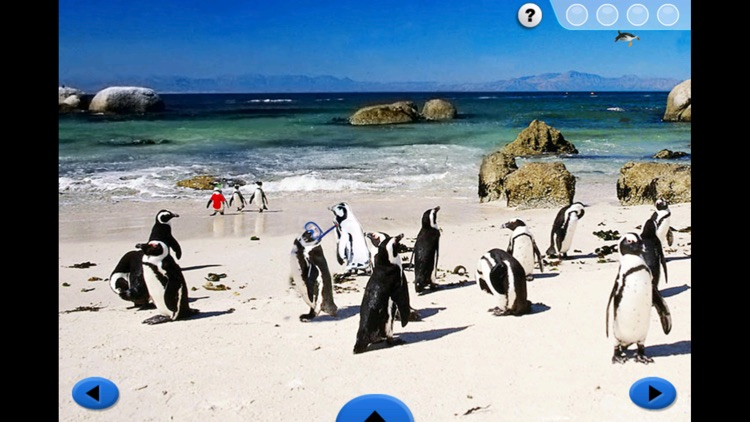 SeaWorld: Penguin Pals screenshot-3