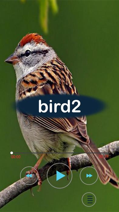 نغمات باصوات الطيورلقطة شاشة1