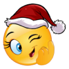 Apeiront Solutions Private Limited - Christmas Emoji Icons & Stickers artwork