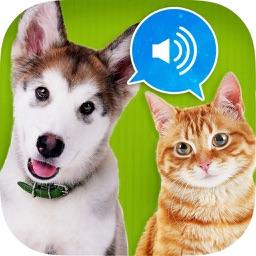 Animal sounds HD !