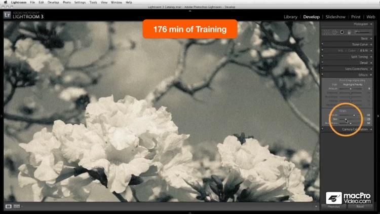 Course For Lightroom 101 screenshot-4