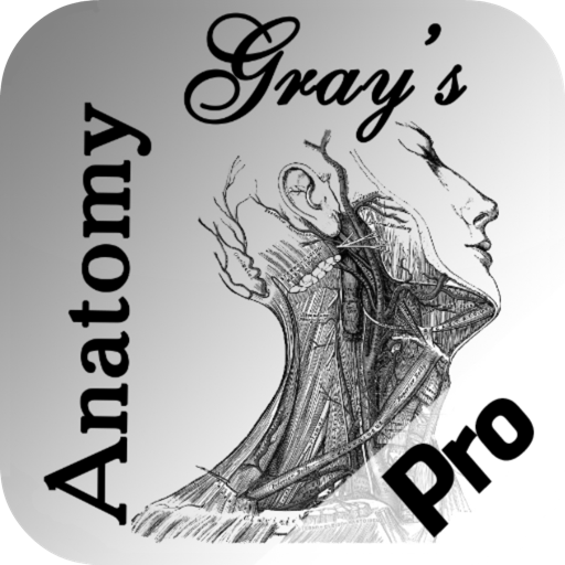 Gray's Anatomy HD for Students