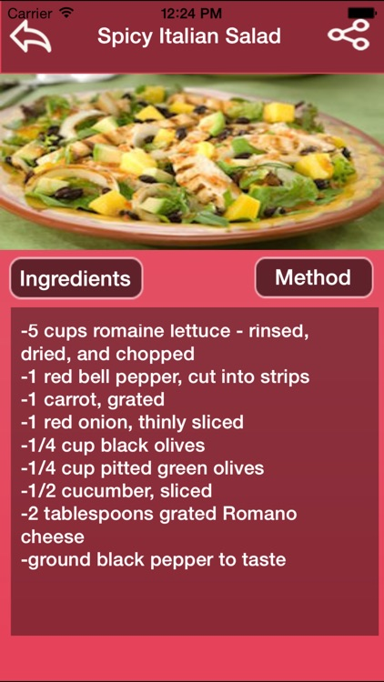 Italian Salad Recipes screenshot-2