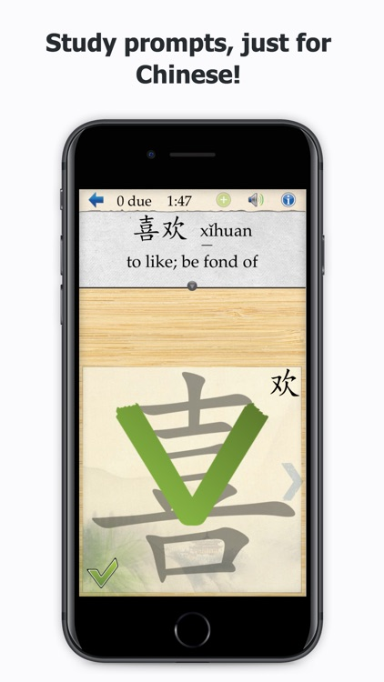Skritter Chinese screenshot-2