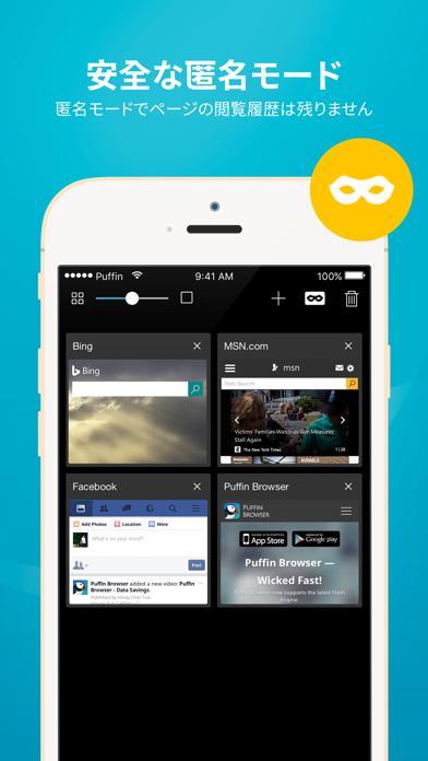 Puffin Browser Pro ScreenShot2