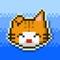 Wilful Kitty