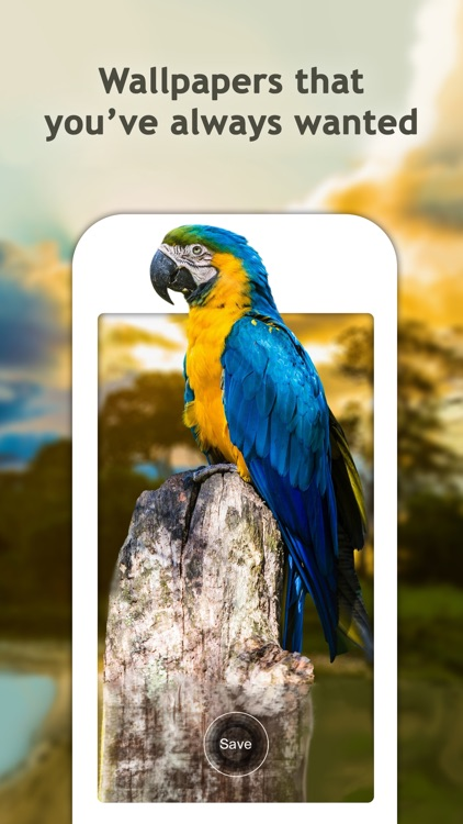 Dynamic Wallpapers for Lock Screen – Pro Themes