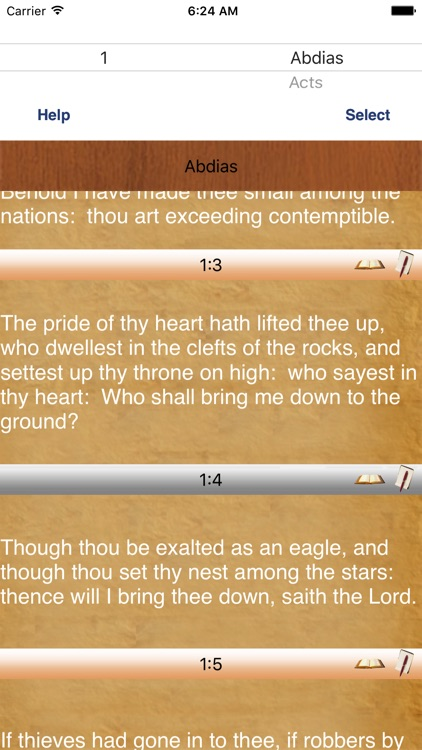 Douay-Rheims Talking Bible Study screenshot-1