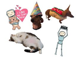 This is a sticker sampler pack, a collection of stickers produced by Studio H