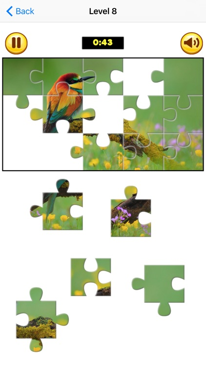 Puzzle Collection Pro: Animals