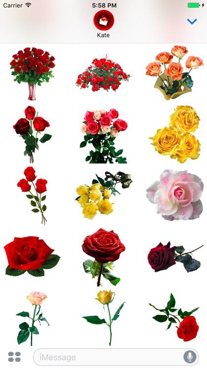 Красивые Цветы для праздников и на каждый день screenshot-3