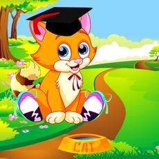 Activities of Kitten Dress Up Games