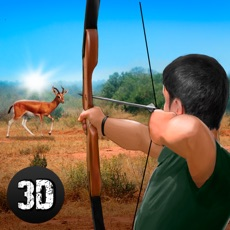 Activities of Wild Animal Hunting: Archery Shooter Full