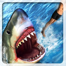 Angry Attack Shark-Revenge Of Killer Fish At Beach