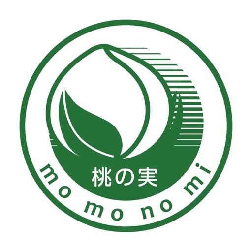 桃の実(モモノミ)