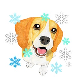 Supper Beagle Animated Stickers