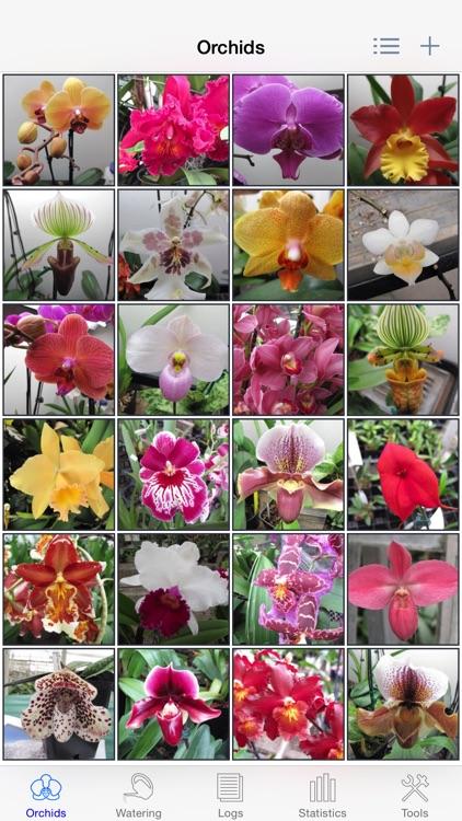 Orchid Album