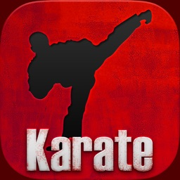 Karate TKD Martial Arts Black Belt and Basics
