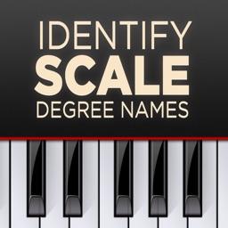 Identify Scale Degree Names