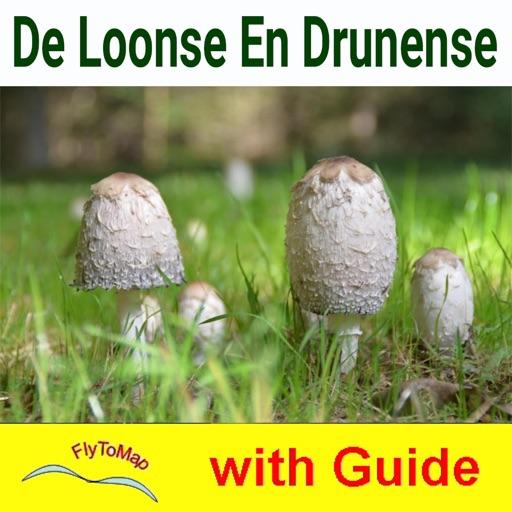 Loonse en Drunense Duinen - NP