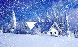 Snowy Winter HD