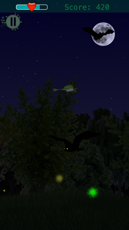 Forest Flutter screenshot-0