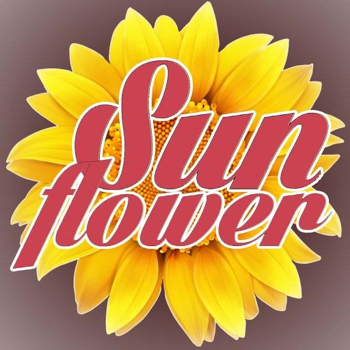 Pizza Sunflower