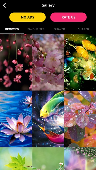 Download 10000+ Wallpapers | FREE Backgrounds & Themes for Pc