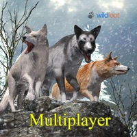 Codes for Wolf World Multiplayer Hack