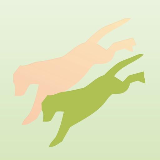 Dancing Dogs Power Yoga