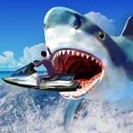 Shark Hunting Attack