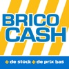 点击获取Brico Cash - Scan