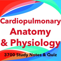 Cardiopulmonary Anatomy & Physiology Exam review