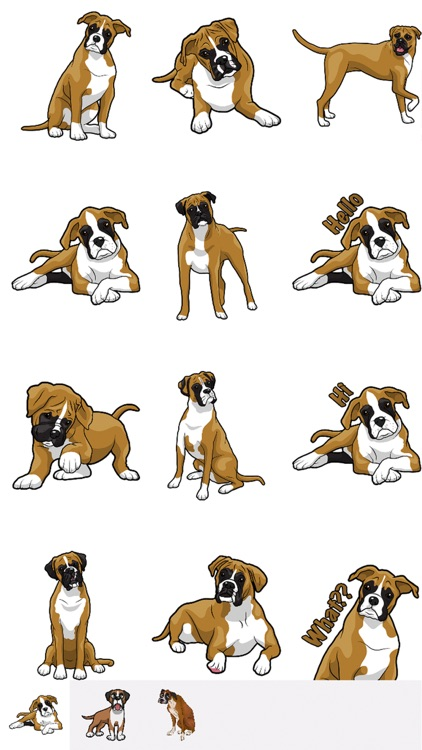 BoxerMoji - Boxer Emoji & Sticker screenshot-0