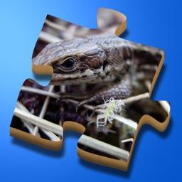 Super Jigsaws Bugs & Creatures