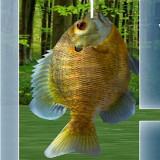 Wild Fishing King 3D Simulator: Flick Fish Frenzy