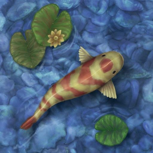 Koi Pond Live HD