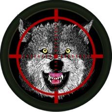 Activities of Arctic Wolf Shooter