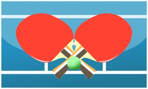Table Tennis MultiPlayer