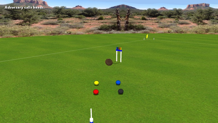 Croquet Pro 2 screenshot-3