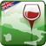 Wine Maps of Italy