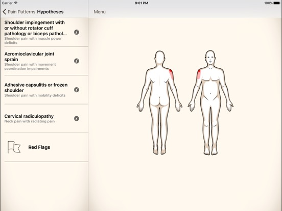 Clinical Pattern Recognition: Shoulder Pain Screenshots