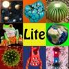 easyLearn Science Lite HD - iPadアプリ